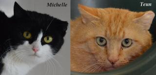 Michelle en Teun